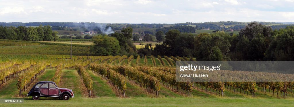A Citroen 2CV deux chevaux car is parked as as Merlot grape vines are ready for harvesting at Chateau Fontcaille Bellevue on October 1, 2013 in Bordeaux, France. The hot humid weather means that the Merlot wine harvest (vendange) has been brought forward in a race against rot.