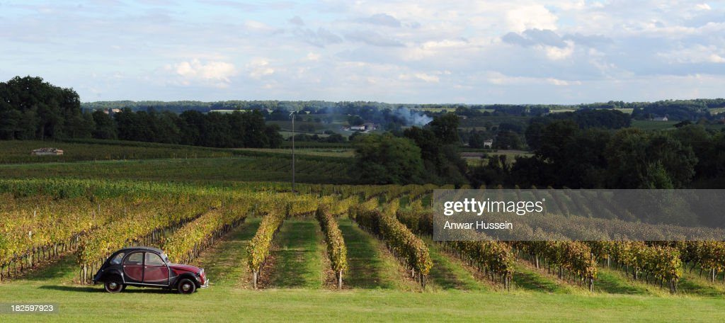 A Citroen 2CV deux chevaux car is parked as Merlot grape vines are ready for harvesting at Chateau Fontcaille Bellevue on October 1, 2013 in Bordeaux, France. The hot humid weather means that the Merlot wine harvest (vendange) has been brought forward in a race against rot.
