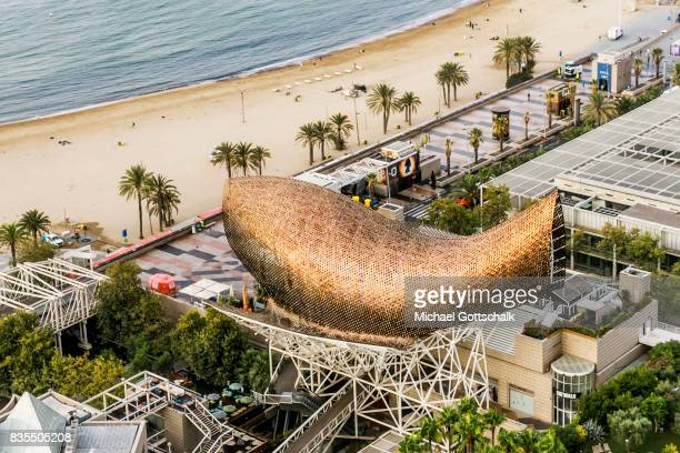 City beach of Barcelona La Barceloneta with Sculputre Peix or Fish by architect Frank Gehry on August 19 2017 in Barcelona Spain