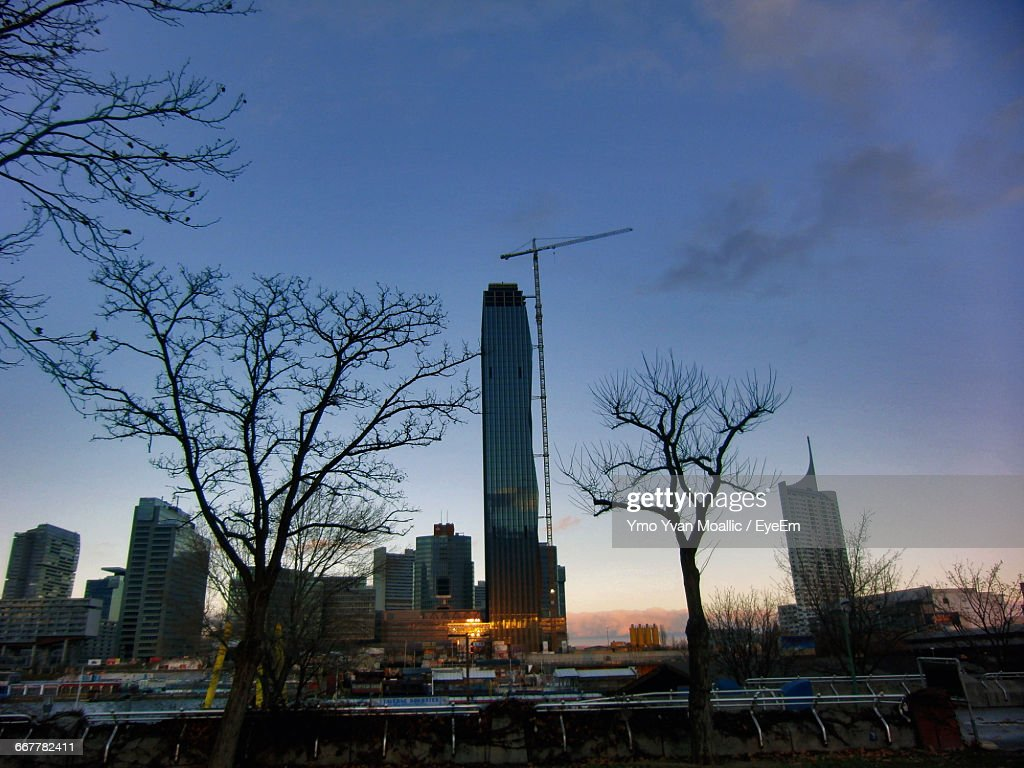 City Buildings And Bare Trees Against Sky : Stock-Foto