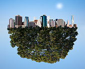 City in a tree