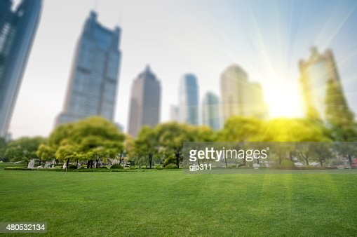 city park with modern building background in shanghai : Stock Photo
