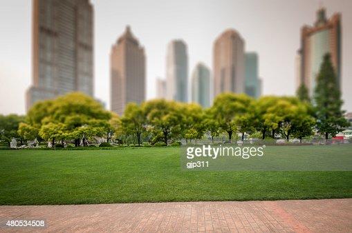 city park mit moderner Gebäude Hintergrund in shanghai : Stock-Foto