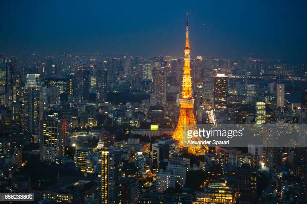 City skyline at night with Tokyo Tower on the right, Tokyo, Japan