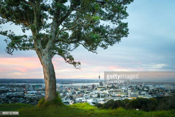 City view of Auckland from Mount Eden, New Zealand