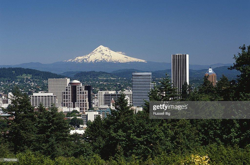City View of Mt. Hood : Stock Photo