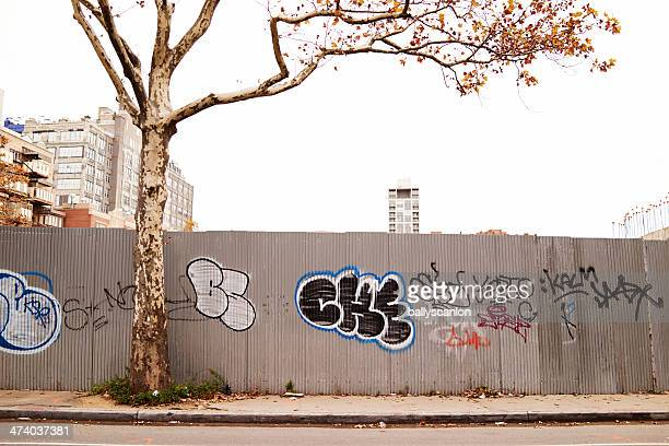 City wall with graffiti and tree