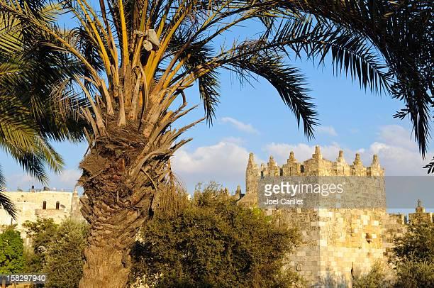 Murs de la ville de Jérusalem en Porte de Damas
