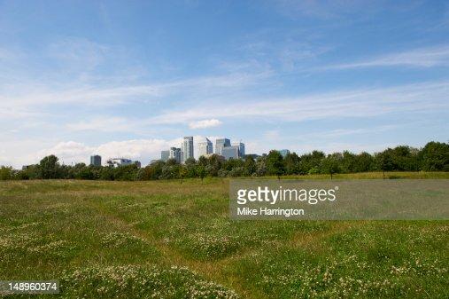 Cityscape Portrait : Stock Photo