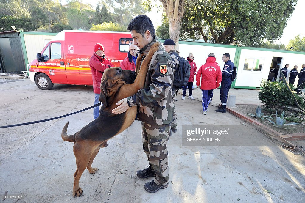 A civil security dog-handlers, firemen and gendarmes, prepare on October 29, 2012 to search for a 12-year-old British boy, who disappeared on October 27, on Porquerolles island, southeastern France. Sixty soldiers and three civil security dog-handlers from Brignoles are paricipating in the search.