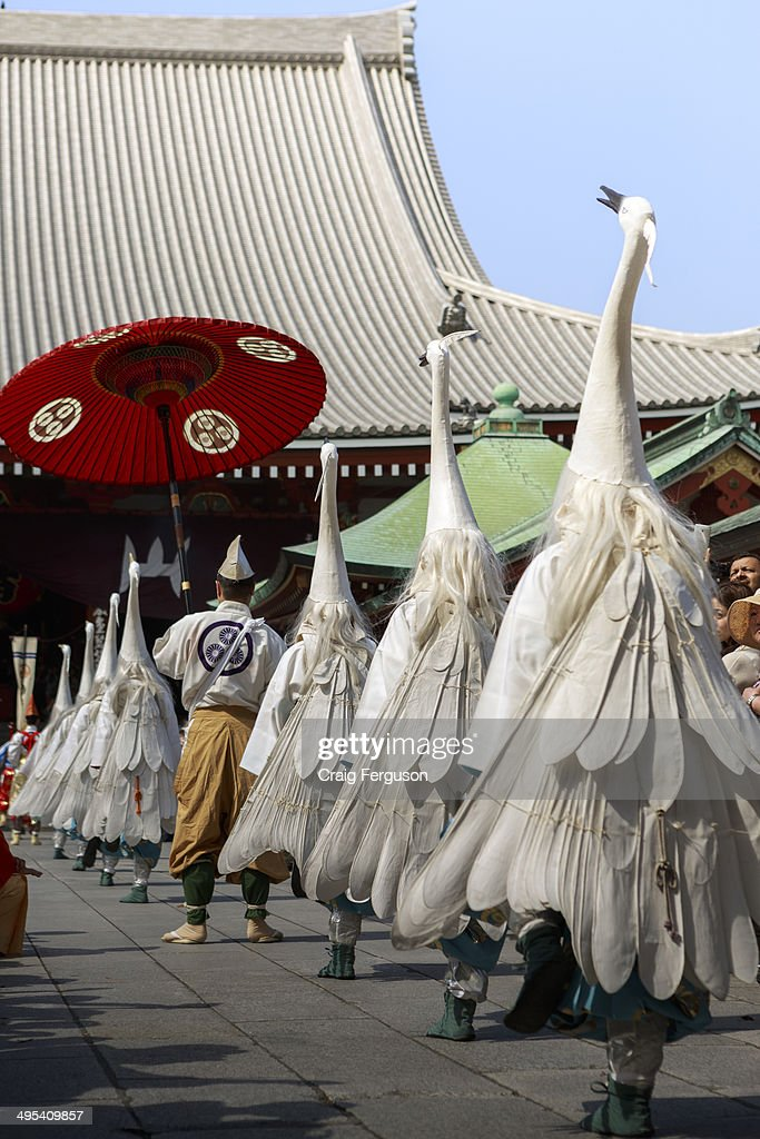 TEMPLE ASAKUSA TOKYO JAPAN Clad in the costume of a crane participants approach the shrine during Sanja Matsuri Sanja Matsur is an annual Shinto...