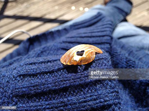 Clam On Blue Sweater