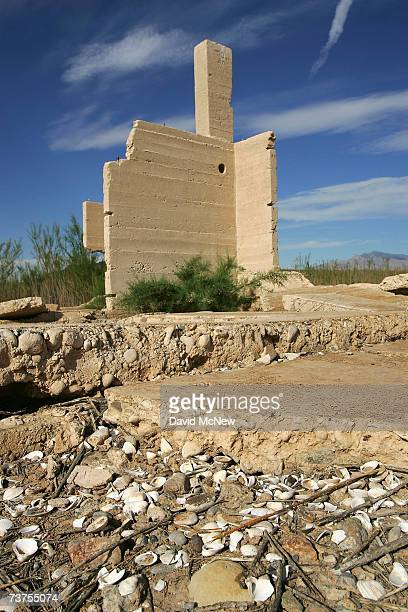 Clam shells near an ice cream parlor in the ruins of Mormon pioneer town Saint Thomas flooded 70 years ago by the rising waters of the Colorado River...