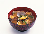 Clams in Miso soup, white background