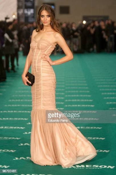 Clara Alosno attends Goya prizes photocall at Madrid City Hall on February 14 2010 in Madrid Spain