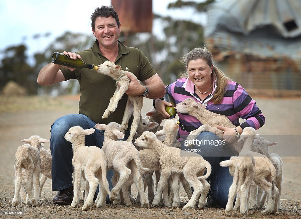 Clare sheep farmers, Phil Lally and fiancee Michele Prince, with Savannah lambs they are hand-feeding and rearing for premium market produce, at their boutique farm between Clare and Burra on May 6, 2010 in Adelaide, Australia.