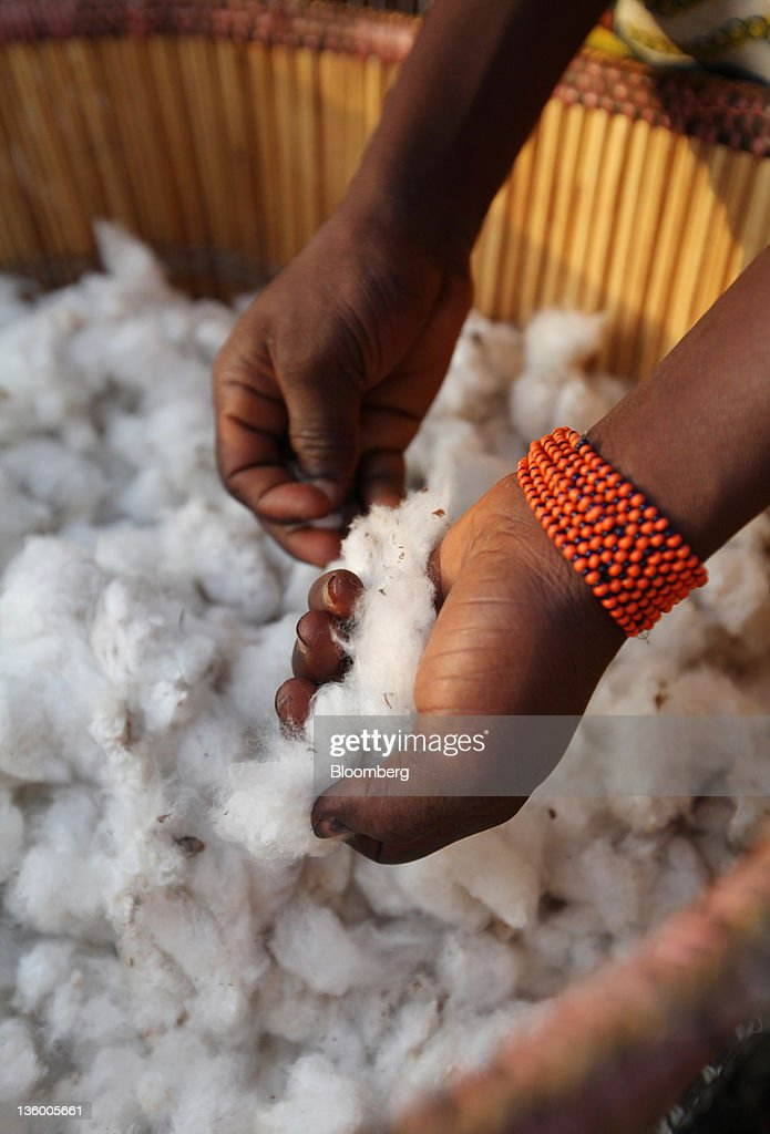 Clarisse Kambire, 13, a child laborer, wears her only posession, a bead braclet, as she carefully draws out dirt and insects from bolls of fair-trade organic cotton she has hand-picked in the fields near Benvar, Burkina Faso, on Friday, Nov. 11, 2011. In Burkina Faso, one of the poorest countries in the world, where child labor is endemic to the production of its chief crop export, paying lucrative premiums for organic and fair traden cotton has -- perversely -- created fresh incentives for exploitation. Photographer: Chris Ratcliffe/Bloomberg via Getty Images