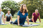 Mature healthy people doing yoga at park. Group of multiethnic people exercising on green grass with yoga mat. Happy men and smiling women in yoga class doing exercise outdoor.'r