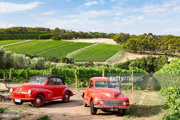 Classic Australian cars among Morningon vineyards