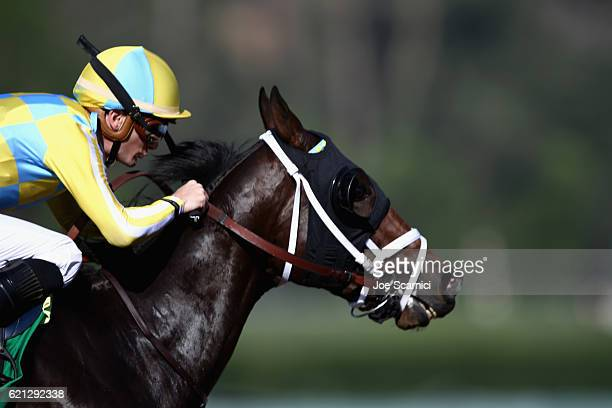 Classic Empire ridden by Julien Leparoux wins the Sentient Jet Juvenile race on day two of the 2016 Breeders' Cup World Championships at Santa Anita...