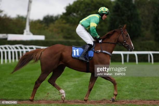 Classic Fly ridden by Felix de Giles going to post for the Betfair iPhone Android App Handicap Chase