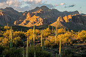 Beautiful afternoon light in the Sonoran Desert. Superstition Mountains, Arizona. American Southwest.