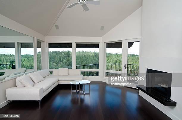 Classy modern home