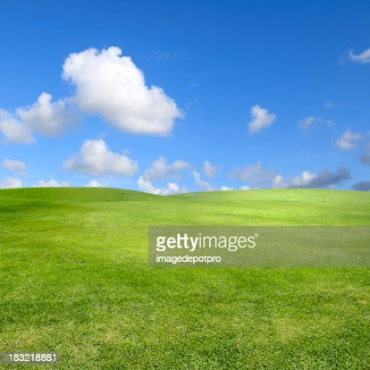 clean green landscape over clear sky