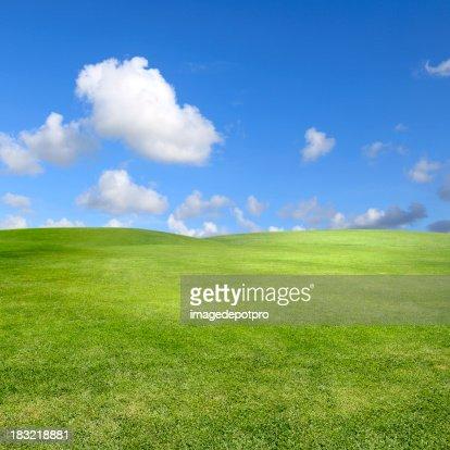 Limpar Paisagem Verde sobre Céu claro