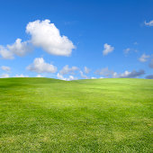 landscape shot of green field over blue sky.Please see some similar pictures from my portfolio: