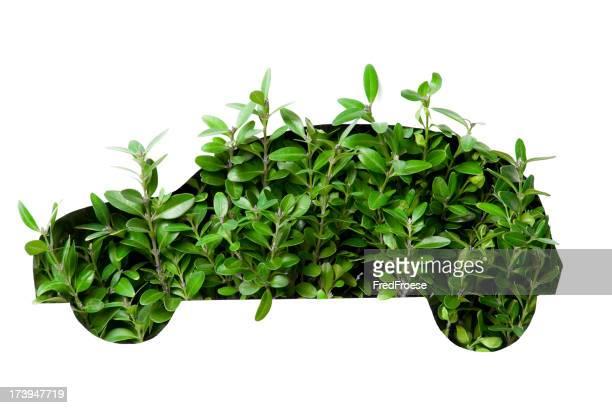 Clean Power: Green Car