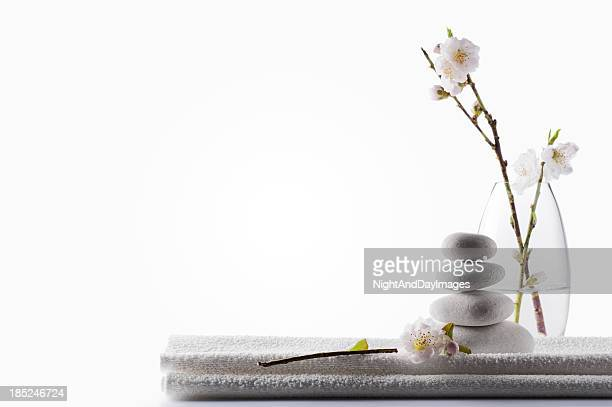 Clean White Spa Background