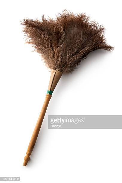 Cleaning: Feather Duster Isolated on White Background