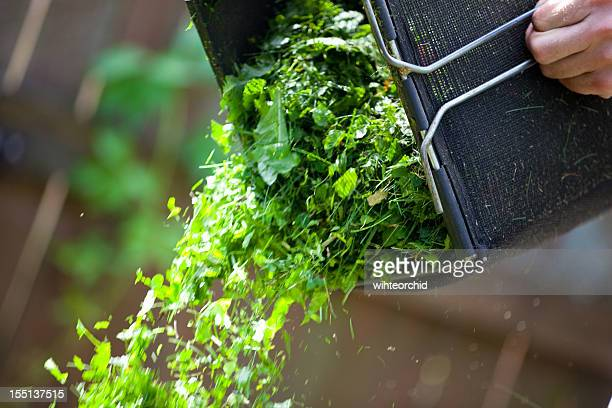 Nettoyage herbe boîte