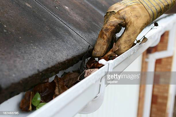 Cleaning Guttering