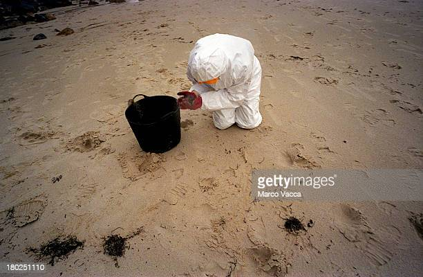 Cleaning the beach after a disaster