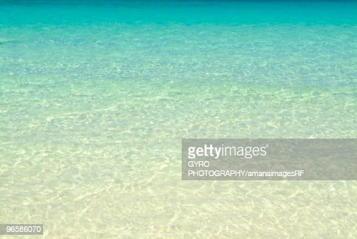 Clear blue sea : Stock Photo