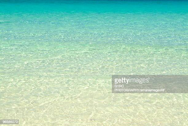 Clear blue sea