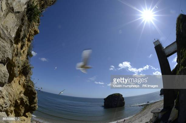 Clear skies across the north as temperatures rise at Marsden Grotto in South Shields with Marsden rock below