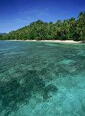 Clear Waters of Fiji