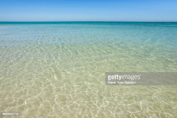 Clear waters of the lagoon