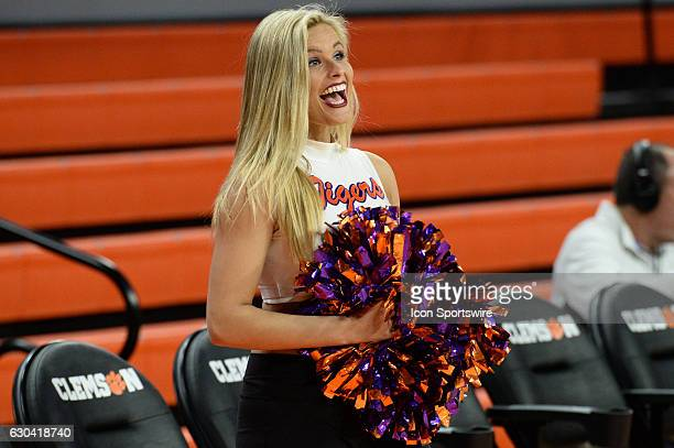 Clemson Rally Cat prior to 1st half action between the Clemson Tigers and the South Carolina State Bulldogs on December 13 2016 at Littlejohn...