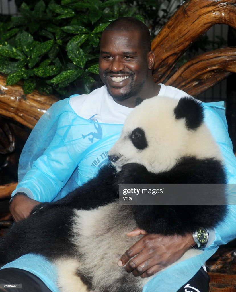 NBA Cleveland Cavaliers player Shaquille O'Neal holds a panda on July 16, 2009 in Chengdu of Sichuan Province, China.