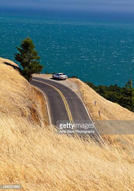 Cliff hugging road over Pacific ocean. California.