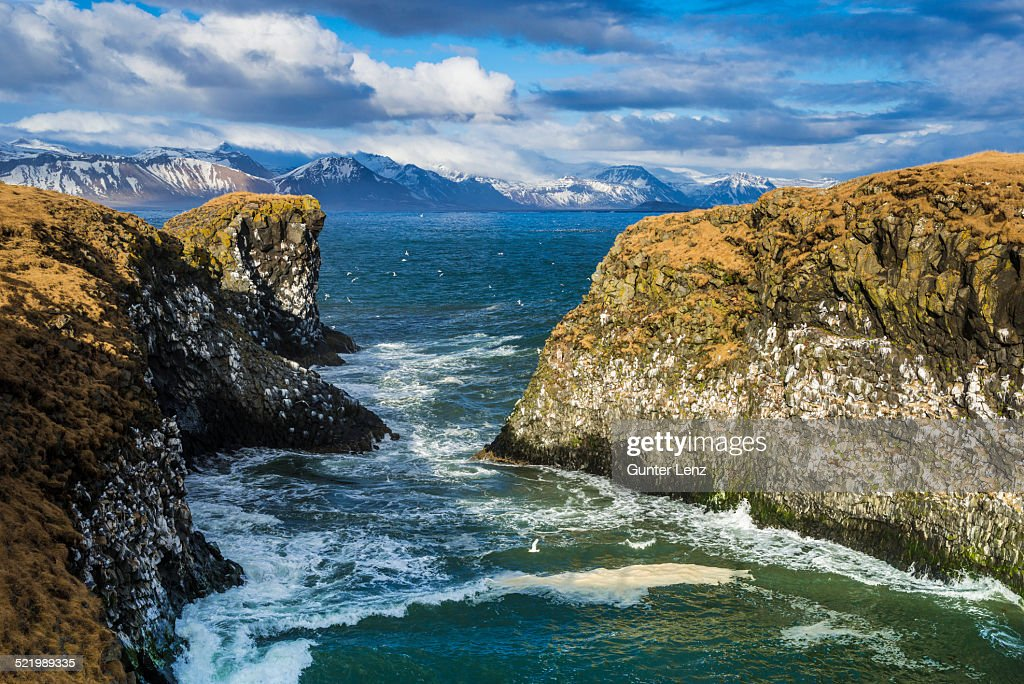 Cliff near Anarstapi, mountains of the Snaefellsness Peninsula at the back, Vesturland, Iceland