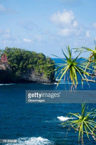 Cliff overlooking the sea, Hawaii Tropical Botanical Garden, Hilo, Big Island, Hawaii Islands, USA : Foto de stock