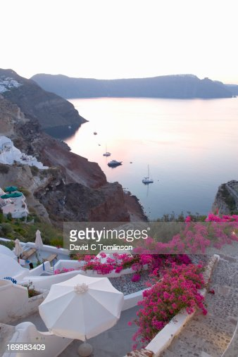 Clifftop bougainvillea, Oia, Santorini, Greece