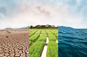 Climate change, compare image with Drought, Green field and Ocean metaphor Nature disaster, World climate and Environment, Ecology system.
