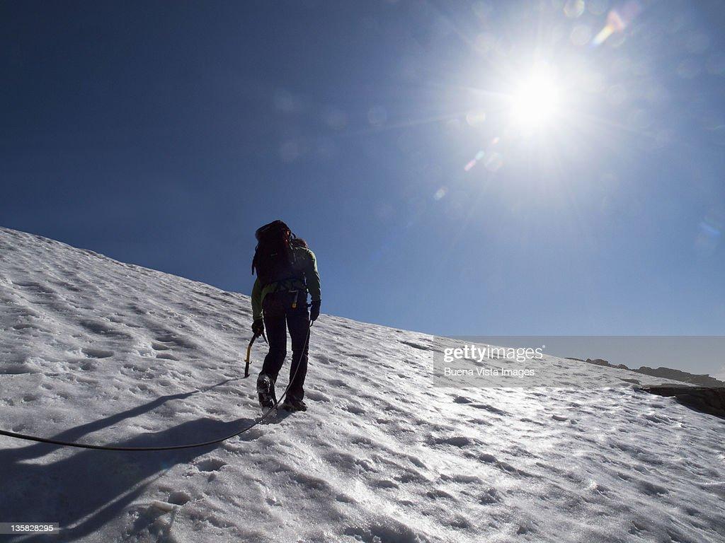 Climber on the Mount Rosa Massif : Stock Photo