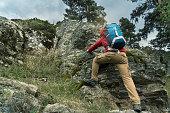 Nature, Forest, Camper, Climbing, Man